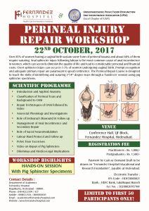 Perineal Injury Repair Workshop
